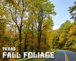 Fall Foliage trips and tours in Texas in 2019