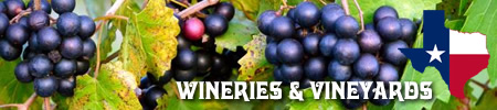 Wineries and vineyards in East Texas