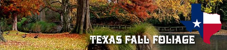 Fall foliage tours and road trips in East Texas