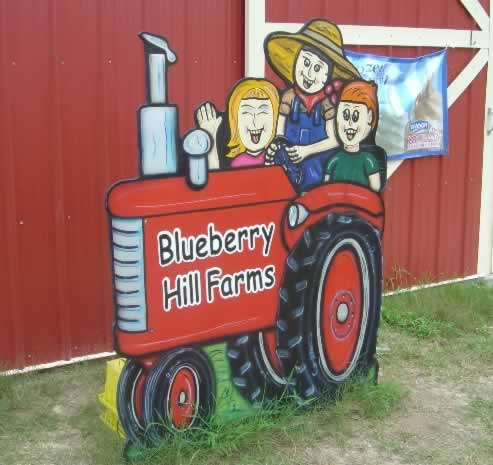 Blueberry Hill Farms, Edom Texas