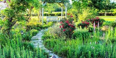 Texas Botanical Gardens Arboretums Flower Trails And Parks