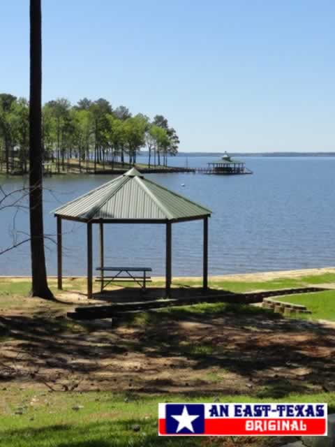 Picnic area at Toledo Bend Reservoir