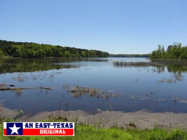 A quiet bay at Toledo Bend Reservoir